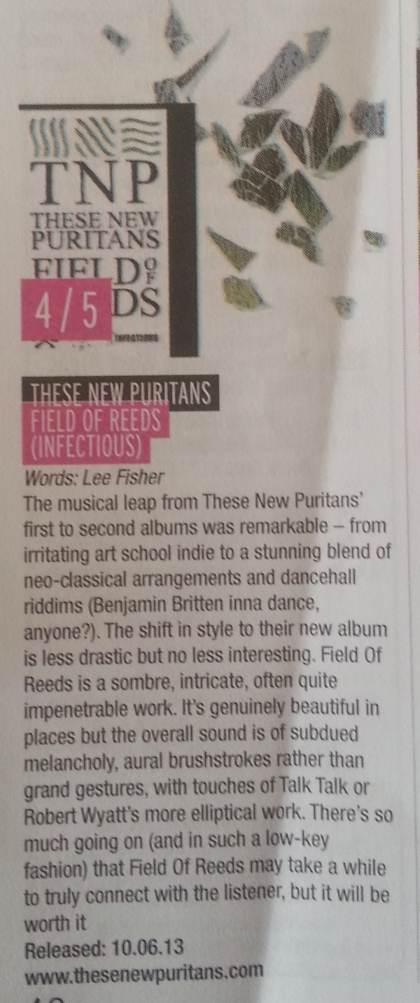 These New Puritans (July 2013)
