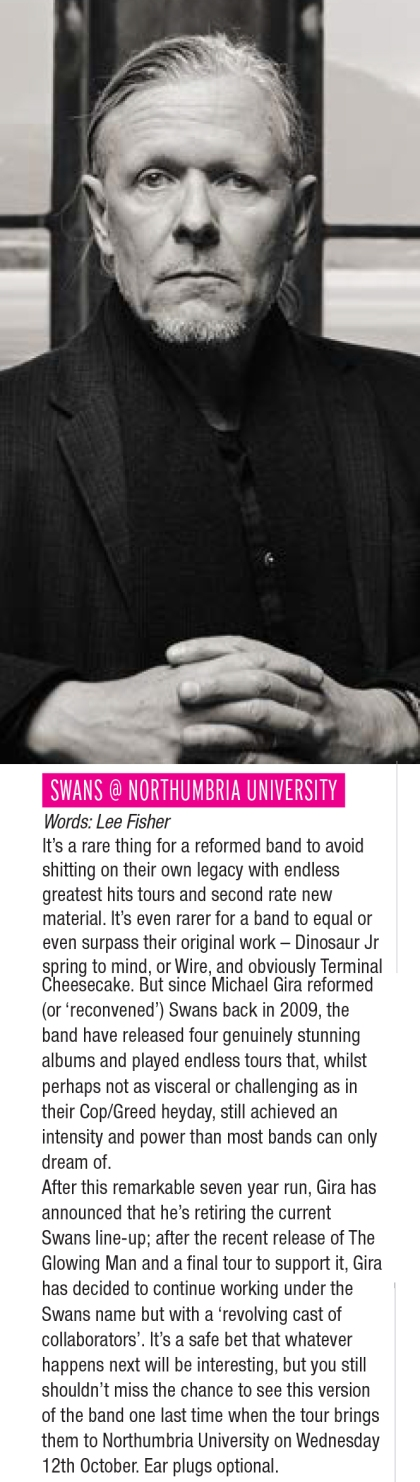 swans-news
